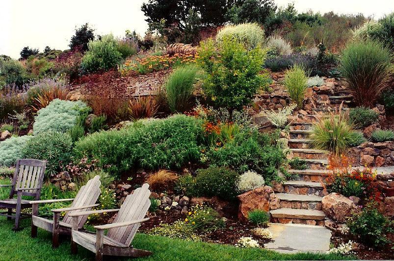 Ландшафт в цветах: оранжевый, черный, серый, светло-серый, темно-зеленый. Ландшафт в стиле экологический стиль.