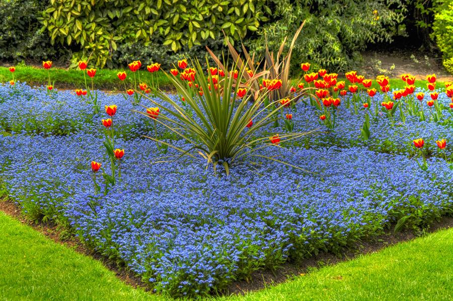 Ландшафт в цветах: оранжевый, желтый, зеленый, голубой, бирюзовый. Ландшафт в .