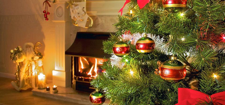 5 советов по уходу за новогодней ёлкой