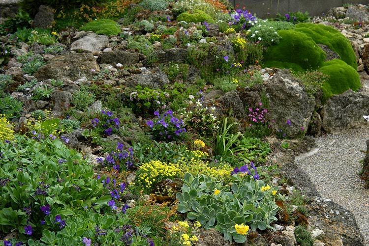 Ландшафт в цветах: желтый, зеленый, бирюзовый, фиолетовый, серый. Ландшафт в стилях: средиземноморский стиль, экологический стиль.