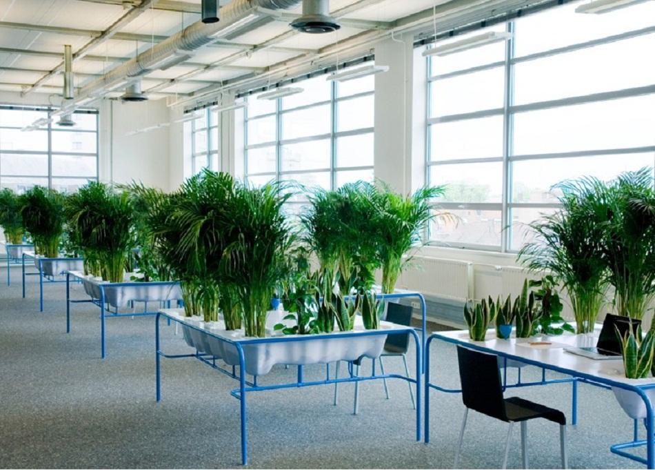 Мебель и предметы интерьера в цветах: голубой, бирюзовый, серый, белый, темно-зеленый. Мебель и предметы интерьера в .