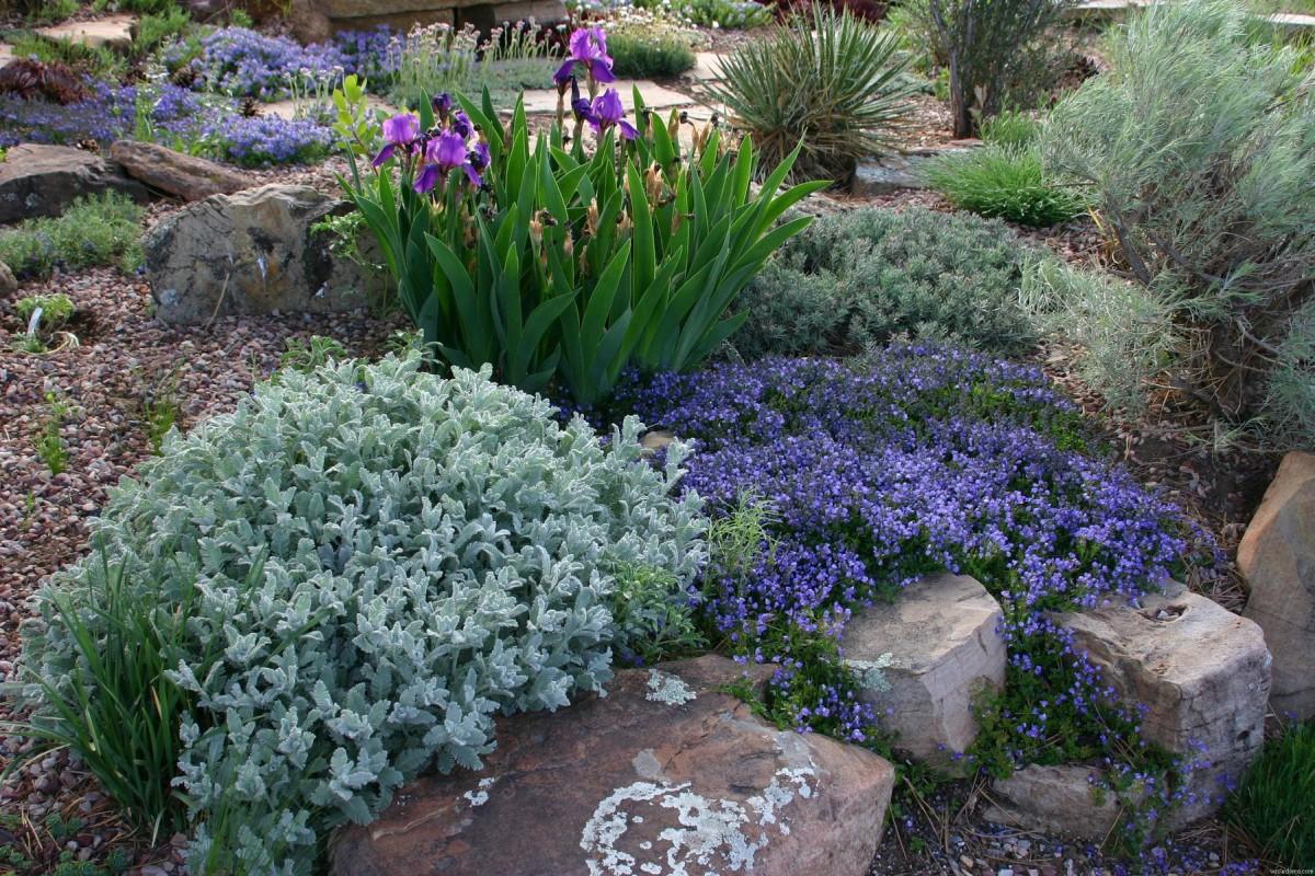 Ландшафт в цветах: зеленый, голубой, бирюзовый, серый, светло-серый. Ландшафт в стилях: средиземноморский стиль, экологический стиль.