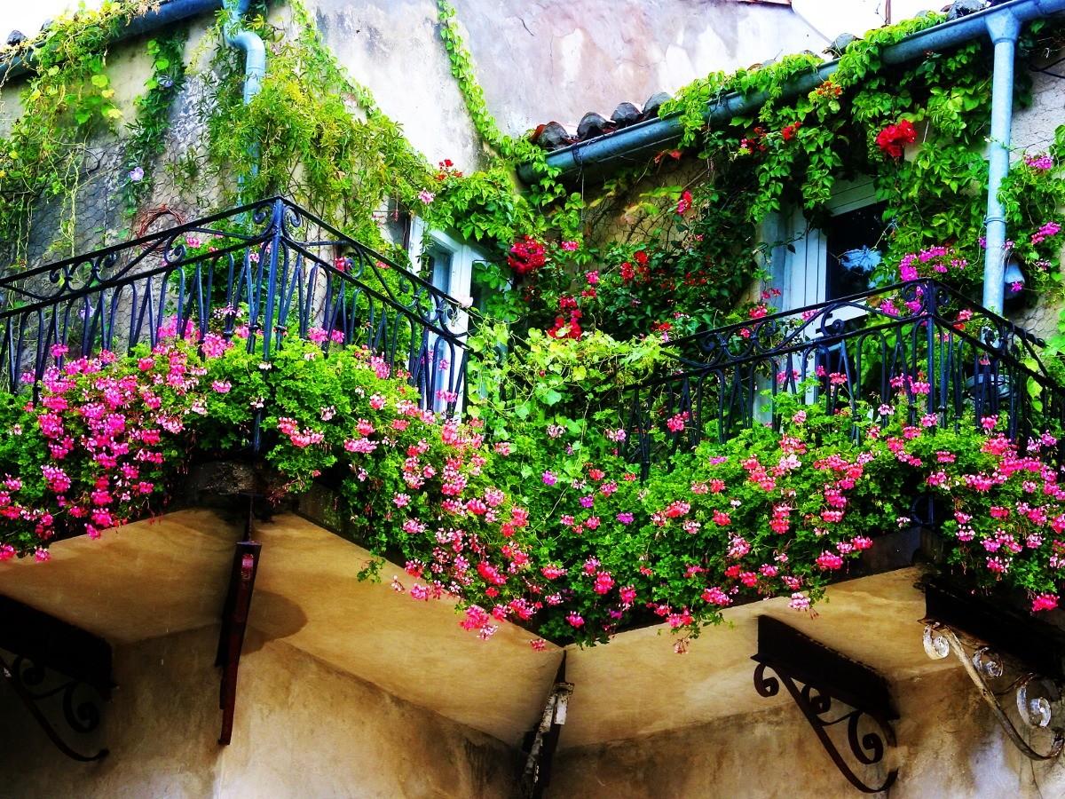 Балкон, веранда, патио в цветах: черный, темно-зеленый, коричневый, бежевый. Балкон, веранда, патио в .