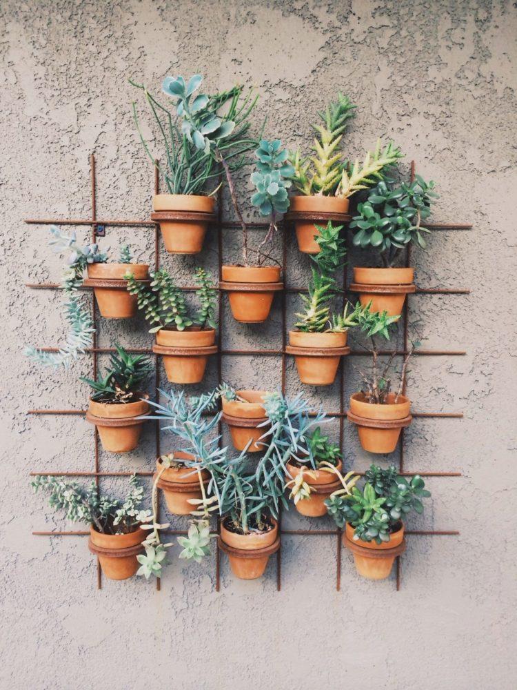 Вертикальный сад: идеи, которые вас вдохновят
