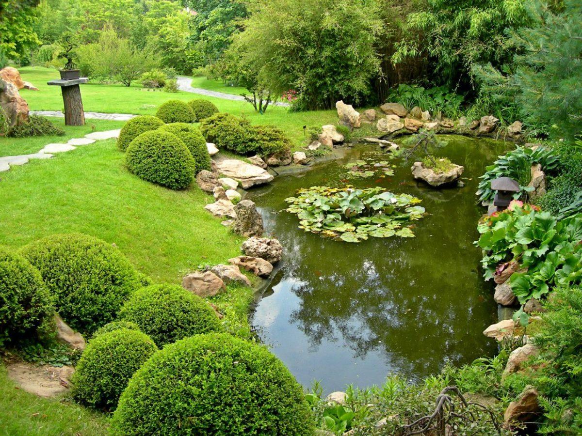Сад и участок в  цветах:   Бежевый, Зеленый, Салатовый, Темно-зеленый, Черный.  Сад и участок в  .