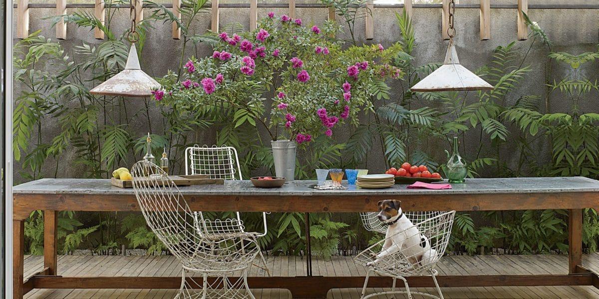 Комнатные растения в интерьере: 24 идеи размещения