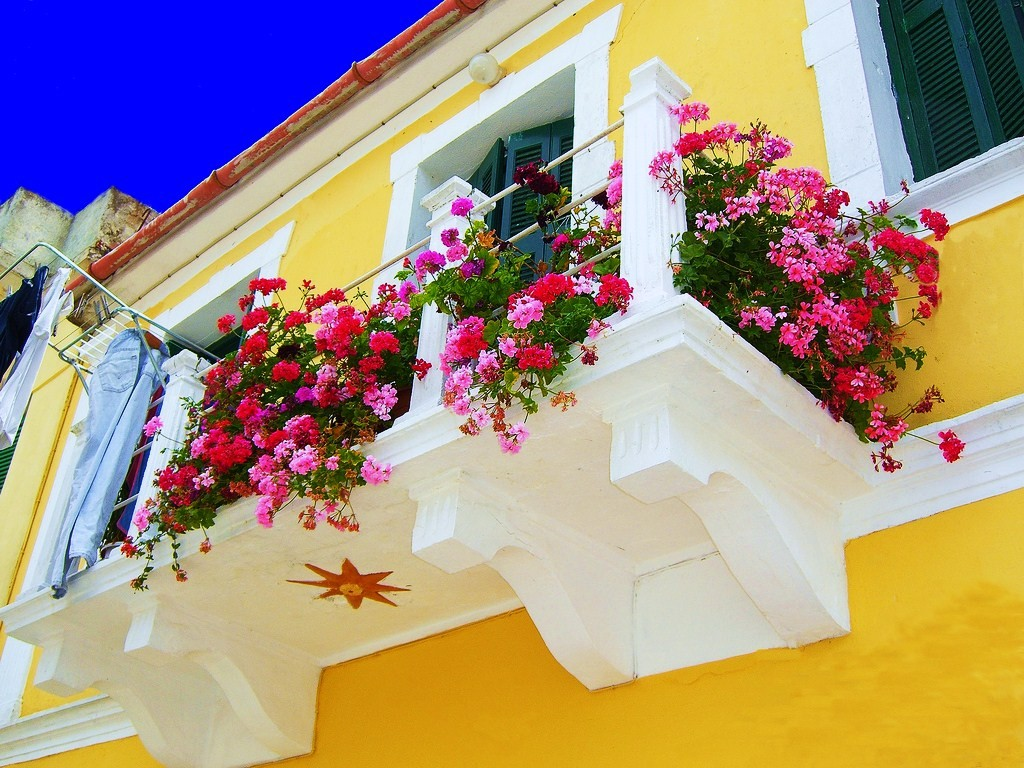 в  цветах:   Желтый, Красный, Лимонный, Салатовый, Фиолетовый.  в  .