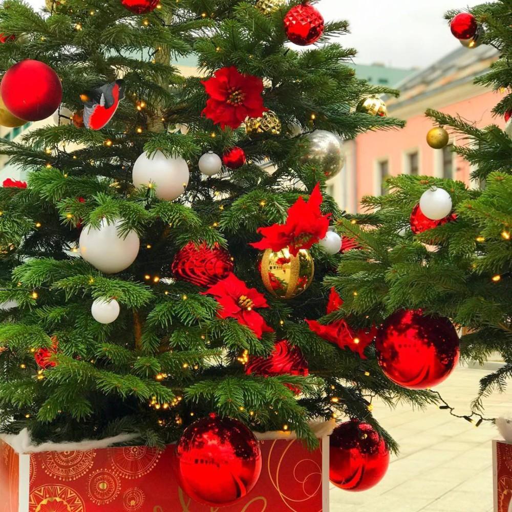 Путешествие в Рождество: московские елки от кутюр
