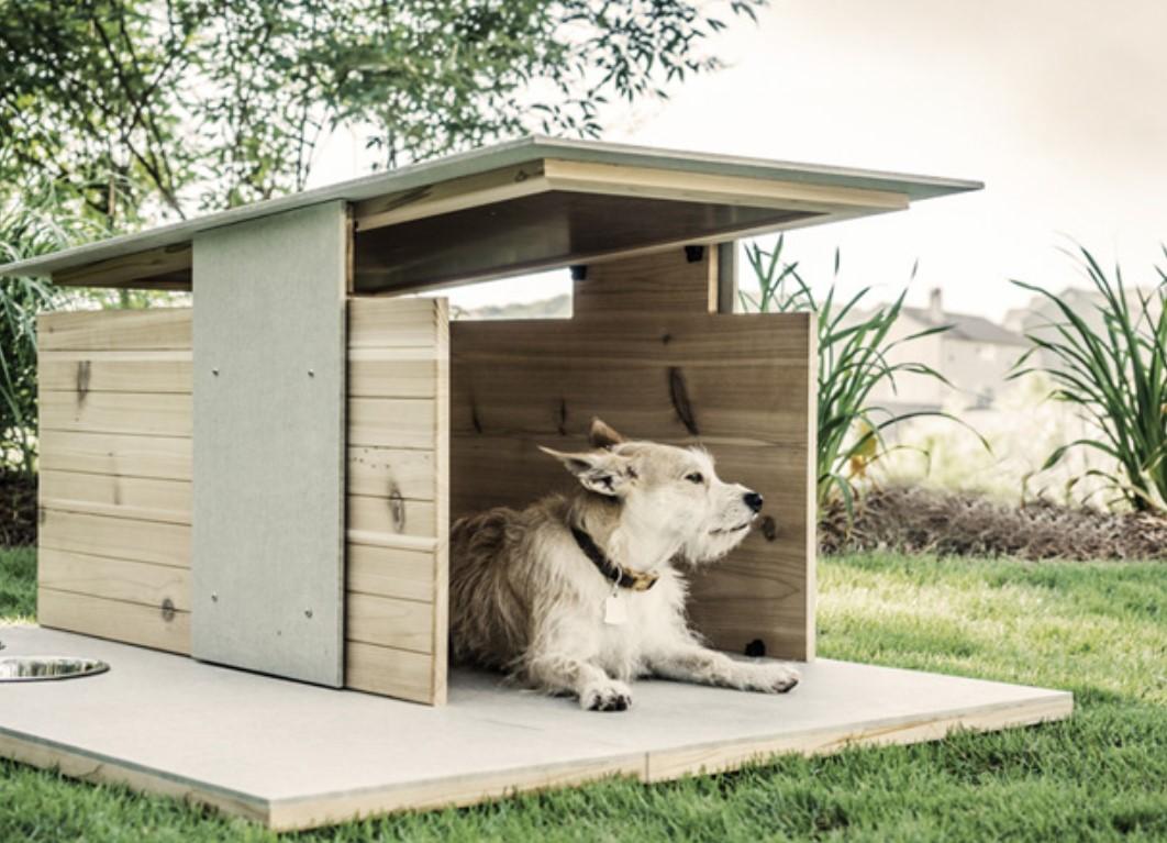 Будка для собаки своими руками: 62 идеи для вдохновения